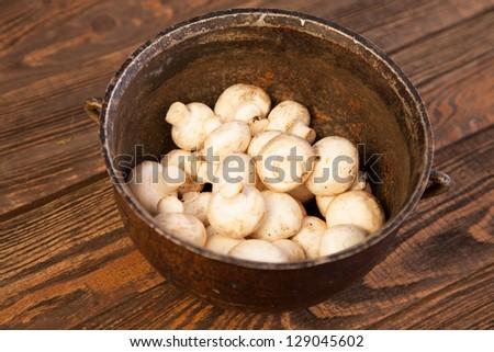 Mushrooms on a kitchen table