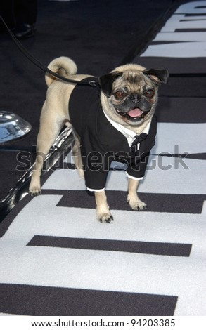 MUSHY the dog at the Los Angeles premiere of his new movie Men in Black II. 26JUN2002.  Paul Smith / Featureflash