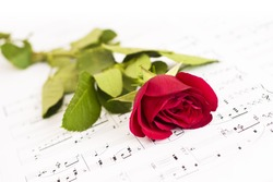 Music Scores and red roses.