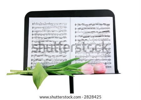 Music stand with two pink tulips isolated with clipping path