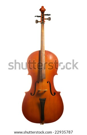 Musical instrument cello isolated on white background