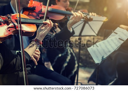 Musicians playing the violin close up.