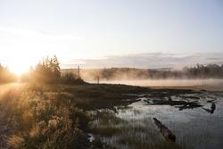 Muskoka road and lake at sunrise