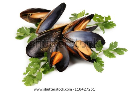 Mussels in shell with fresh herbs isolated on white