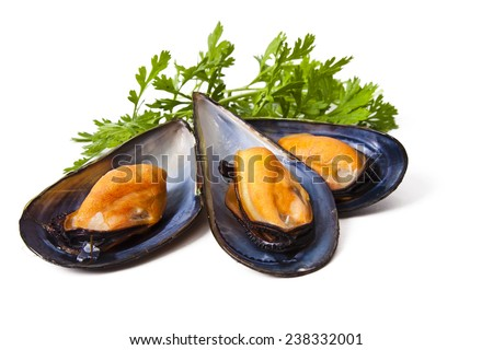 mussels isolated on white background Stockfoto ©