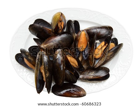 Mussels on porcelain plate isolated on white background, clipping path inside