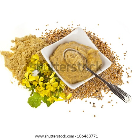 Mustard  dish sauce and powder, seeds and mustard flower  isolated on white