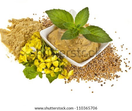 Mustard dish sauce and powder, seeds with mustard flower bloom close up isolated on white