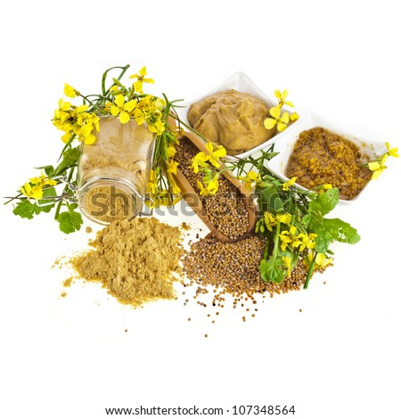 Mustard dressing and mustard seeds with mustard flower blossom  isolated on white