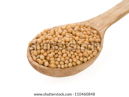 Mustard spices in spoon isolated on white background - stock photo