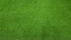 My artificial grass, green color.
