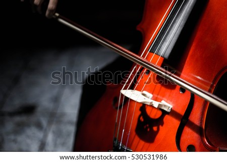 My Cello #530531986