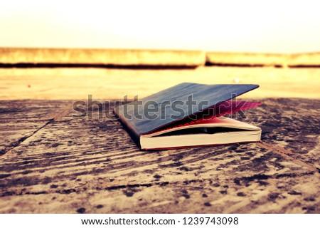 My dear diary #1239743098