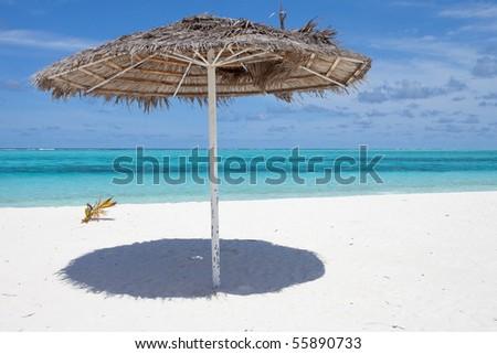 My favorite sunshade