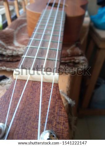 My ukulele Brown Neck nylon strings