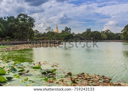 Myanmar Pagoda 3