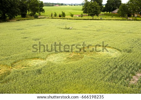 Mysterious crop circle in a wheat field near the city of Lochem in the Netherlands #666198235