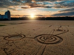 Mysterious crop circle in oat field near the city at the evening sunset