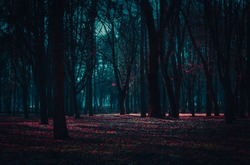 Mysterious fairy forest in a fog with red flowers lit by moonlight.