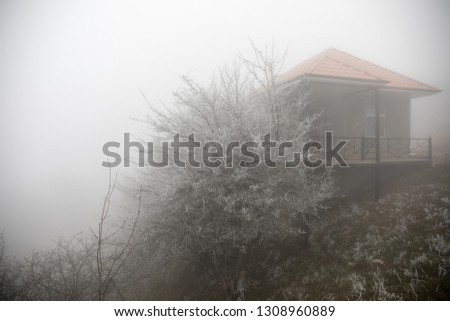 Mysterious house in the forest with fog and a tree. The old spooky house on the land of nowhere. Winter Landscape #1308960889