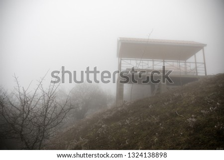 Mysterious house in the forest with fog and a tree. The old spooky house on the land of nowhere. Winter Landscape #1324138898