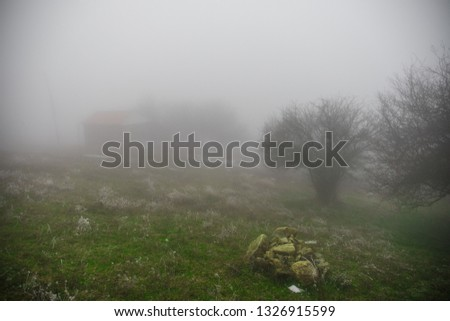 Mysterious house in the forest with fog and a tree. The old spooky house on the land of nowhere. Winter Landscape #1326915599