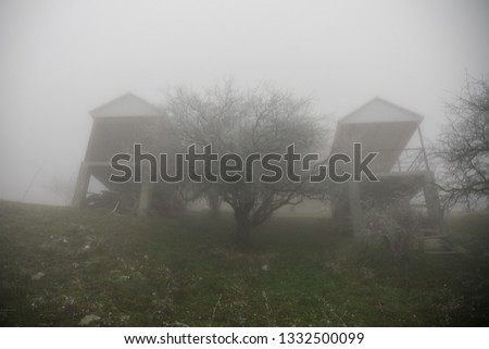 Mysterious house in the forest with fog and a tree. The old spooky house on the land of nowhere. Winter Landscape #1332500099