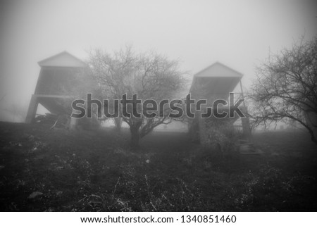 Mysterious house in the forest with fog and a tree. The old spooky house on the land of nowhere. Winter Landscape #1340851460