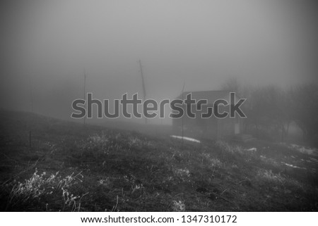Mysterious house in the forest with fog and a tree. The old spooky house on the land of nowhere. Winter Landscape #1347310172
