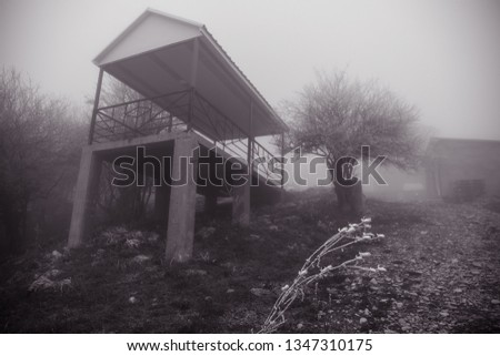 Mysterious house in the forest with fog and a tree. The old spooky house on the land of nowhere. Winter Landscape #1347310175