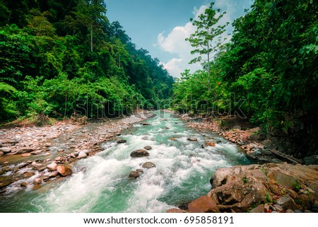 Mysterious mountainous jungle with trees leaning over fast stream with rapids. Magical scenery of rainforest and river with rocks. Wild, vivid vegetation of tropical forest. North Sumatra, Indonesia.