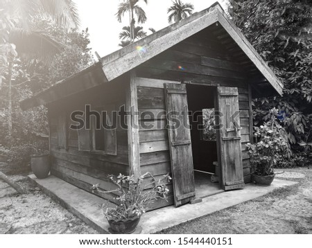Mysterious old wooden house. Concept vintage, night alive, mystery, horror, halloween, ancient picture, background.
