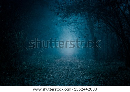 Mysterious pathway. Footpath in the dark, foggy, autumnal, misty forest.