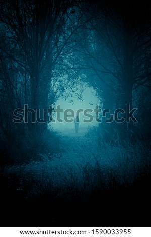 Mysterious pathway. Footpath in the dark, foggy, autumnal, mysterious forest and small mans silhouette walking forward.