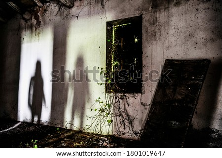 Mysterious shadow of a woman in an abandoned house - Silhouette of female ghost standing on the door of the room - Fear concept in abandoned house - Halloween concept