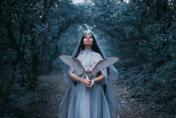 Mysterious sorceress woman witch beautiful blue dress calls for strength divine power. background cold forest tree blue fog cute Girl with hold white owl bird. Artistic fantasy Photography cloak hood