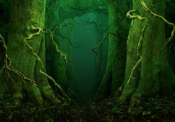 Mysterious trees Crooked branches Enchanted fairytale forest Dark fantasy woodland Massive trunks