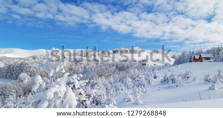 Mysterious winter landscape majestic mountains in winter. Magical winter snow covered tree. Winter road in the mountains. In anticipation of the holiday. Dramatic wintry scene.  #1279268848