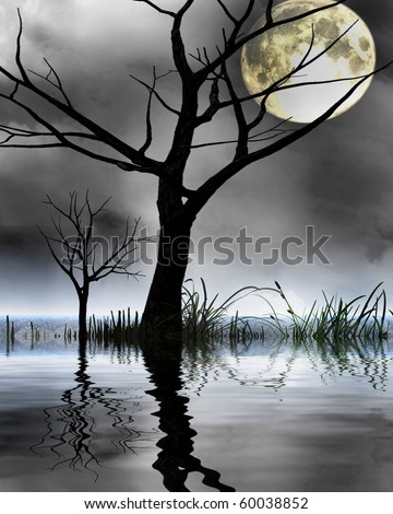 mysterious world: silhouette of a tree in a swamp