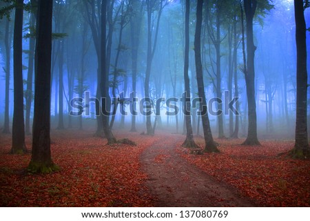 Mystic forest with red leaves and blueish atmosphere (fairytale)