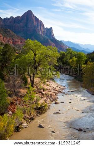 Mystic Scene of Virgin River in Zions National Park