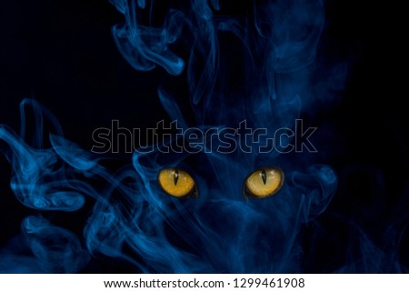 mystical blue cloud of cigarette vapor with glittering feline eyes close-up mysterious exciting abstraction