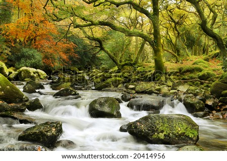 mystical dartmoor river