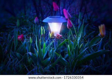 Mystical light from a flashlight with a solar panel illuminates tulips at night. Foto stock ©