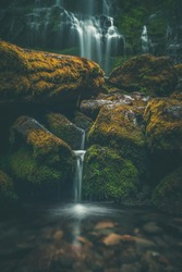 Mystical lush forest waterfall landscape in Oregon, Pacific Northwest