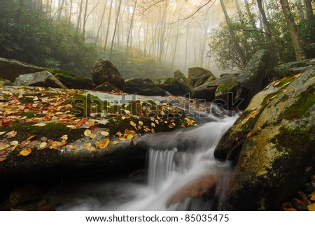 Mystical North Carolina Mountain Autumn Cascade Fog and autumn leaves envelop Boone Fork Creek off the Blue Ridge Parkway in Western North Carolina.