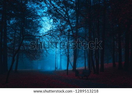 Mystical Strange forest in a fog with red leaves. Background mystic atmosphere. Scary road. Dark mysterious park. Mysterious fairy forest with red flowers lit by moonlight.