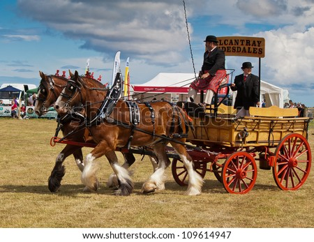 NAIRN, SCOTLAND - JULY 28: Clydesdale horses pull an antique carriage at the annual Nairnshire Farmers Society show on JULY 28, 2012 in Nairn, Scotland.