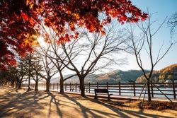 Nakdonggang riverside park at autumn in Andong, Korea