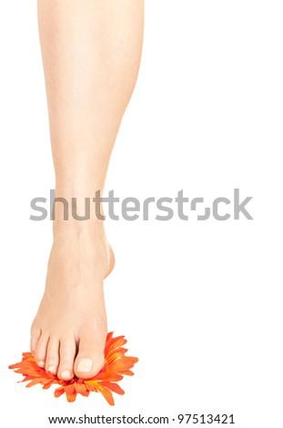 naked female foot on flower